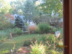 Chris Swanberg's Garden